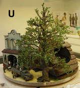 U-tree-front