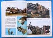 Osprey_P-40_4