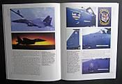F-15_Pic_2