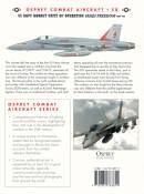 Hornets_Iraq_2_Back