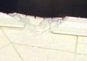 damagedetail
