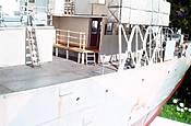 HMS Campanula 19
