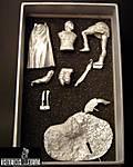 ISUV-002: Box Contents