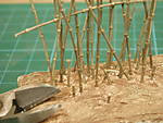 bamboo_4_