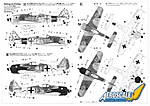 Has_Fw190A-8_Painting